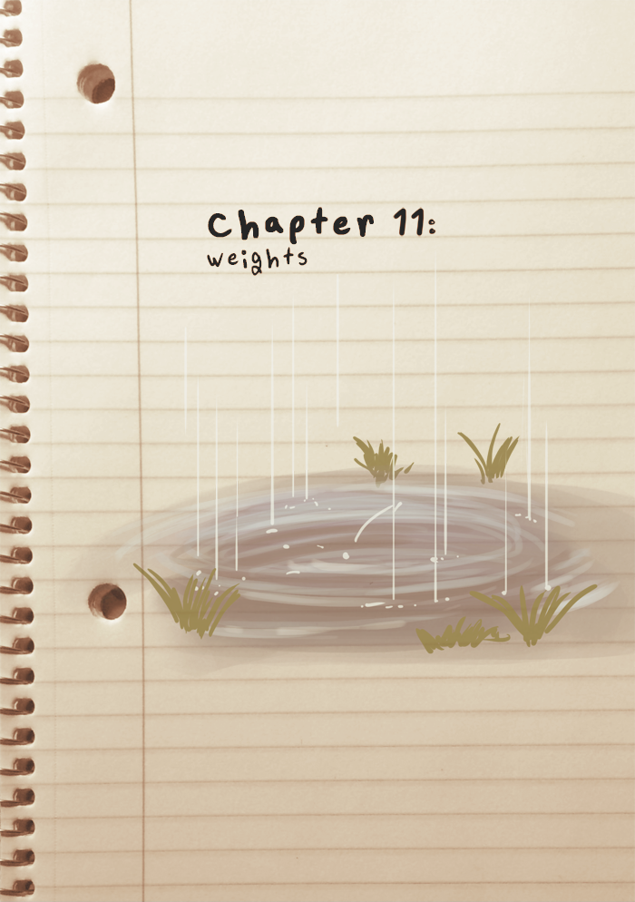 Chapter 11: Weights